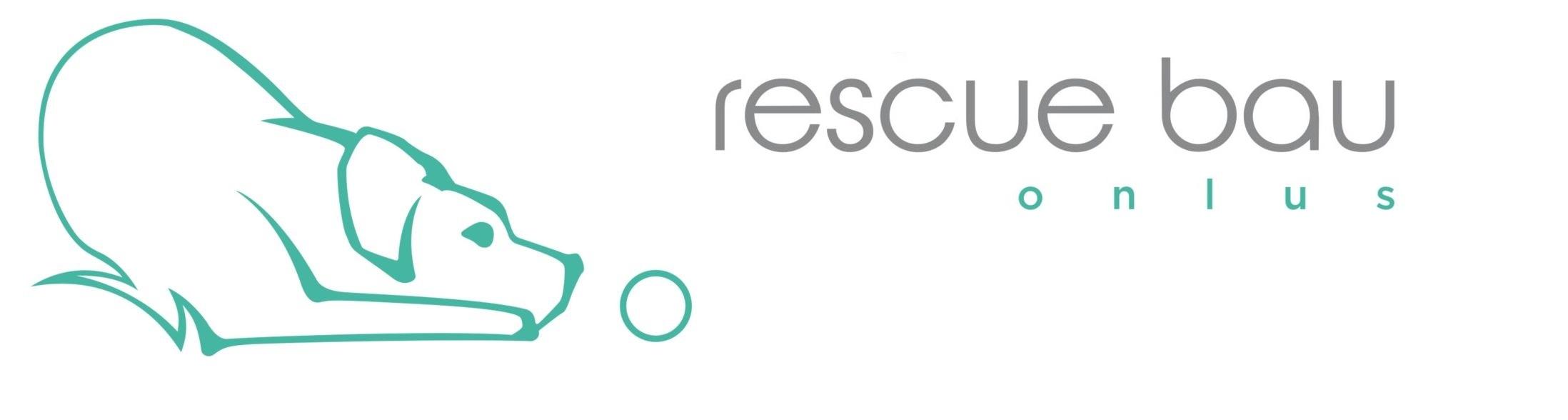 Rescue Bau